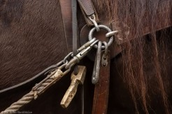 Sandviken 2016-04-17 Högbo Bruk Kurs i arbetskörning med häst