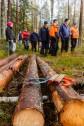 Sandviken 2014-11-02 Högbo Bruk DM Skogskörning med häst